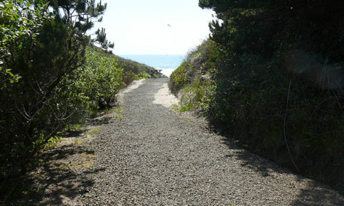 gallery-trail-to-the-ocean